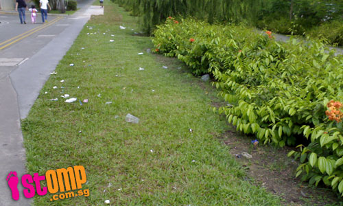 Clean and green? Grass patch outside Sembawang MRT always littered on