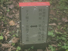 20091010_13.37.41