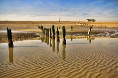 Low Tide Reflections (stmo