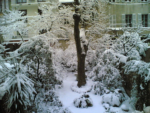 marseille garden under the snow 2