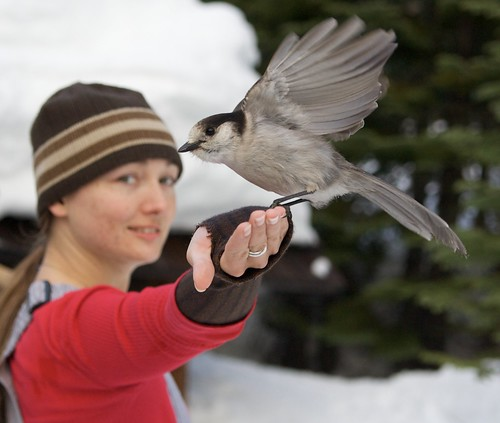 Kellyclare and a bird