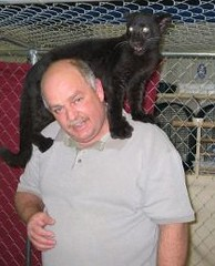 Black Leopard on my shoulders