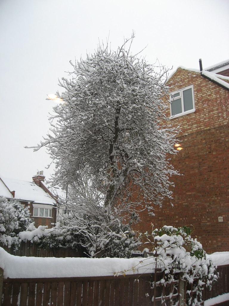 Snowy London 004