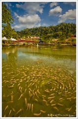 Twisted Flow (hilmy2007) Tags: sky food cloud mountain heritage water fountain shopping restaurant pond sony culture gazebo malaysia cablecar koi langkawi legend twisted ikan whirl a700 mahsuri matcincang abigfave wakaf anawesomeshot macincang