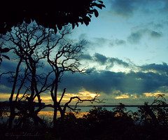Serangan Silhouettes Sunset (Sayid Budhi) Tags: sunset bali silhouette serangan seranganisland pulauserangan silhouettessunset