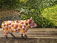 Lady Cow (olvwu | ) Tags: art night cow taiwan ox installation taipei publicart   taipeicity    hsinyidistrict 1260  yearoftheox jungpangwu oliverwu oliverjpwu   olvwu  shinkongmitsukoshidepartmentstore jungpang    taipeicowparade
