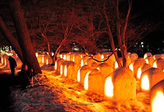 Snow Lantern Festival. (Hirosaki Japan).  Glenn Waters. 4,700 visits to this photo. Thank you. (Glenn Waters in Japan.) Tags: trees winter snow cold ice festival japan night 50mm nikon f14 sigma noflash yuki handheld lantern hirosaki matsuri   yukimatsuri  5photosaday   ysplix nikond700  glennwaters sigma50mmf14exdghsm snowlanternfestival