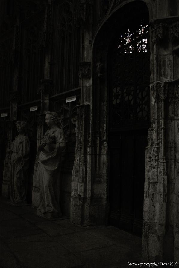 Notre Dame #7