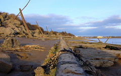 View to the north (from remains of a Severn Barge) (ricksphotos101) Tags: estuary severn riversevern shipwreck tidal forestofdean lydney lydneyharbour