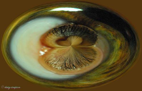 eye amazing circle