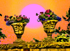 Urn's of the Violet  Sun (Rusty Russ) Tags: voplet sun ozone flowers picture painting art photography end world hot photo image photoshop cs manipulate universe solar system man human flickr google yahoo montage xray red purple green yellow orange rise set wall old young rye new hampshire seawall mansion house water imageediting pictureimages freeimages stockimages aboutinteresting creative creativedigital creativepictures manipulated wizards imagesphotos picturresof funnypictures colorimages colorfulimages graphicsimages hotimages coolimages stumbleupon interesting freeimage picasa newsroom color surreal avant guarde pinterest facebook