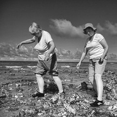 On the rocks (Nick J Stone) Tags: street sea west beach seaside rocks martin candid north norfolk british streetphoto crabs flint parr crabbing runton nickstone