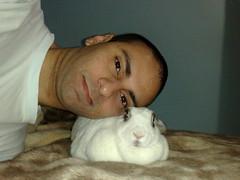Na cama com a coelha (Dan Cocenzo) Tags: playboy coelhinha