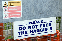 Do Not Feed The Haggis