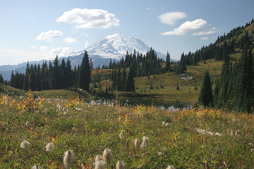 Naches Peak Trail - Mt. Rainier