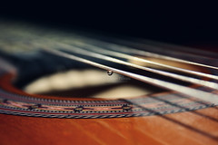 Teardrop On My Guitar (Crazy Princess) Tags: water colors canon eos back focus flickr guitar string strings teardrop on my 400d crazyprincess
