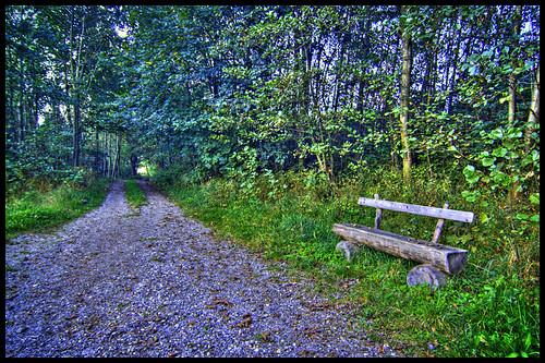 path bench