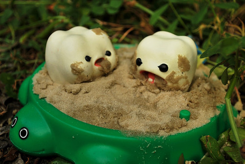 """Yuck, sand doesn't taste very good."""