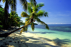 Perfect Fijian beach (7.000+ views!) (msdstefan) Tags: pictures ocean trip travel blue vacation sky panorama sun holiday green sol praia beach fiji strand landscape island coast soleil sand pacific pics urlaub himmel bank playa nikond50 best palm insel southpacific grn blau ufer landschaft sonne plage rtw isla palme zon spiaggia nicest kste oceania pazifik ozean ammeer fidschi sdpazifik  ozeanien nananuira  landschaftsbild  denizkys concordians platinumheartaward pazifischeinseln thisphotorocks worldwidelandscapes flickrestrellas vosplusbellesphotos saariysqualitypictures greatshotss pazificislands expressyourselfaward flickrunitedaward yourpassionawards
