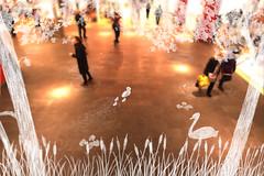Innocence / Ars Electronica Futurelab