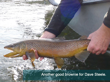 Another good brownie for Dave Steele