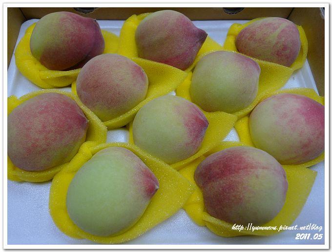 新社華豐農場甜蜜桃 (3)