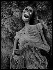 Wiedergnger (Dunkel Elb) Tags: halloween walking dead skeleton skull zombie gore bones horror corpse tot thriller skelett leiche kadaver leichnam wiedergnger widergnger