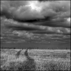 Storm Over the Fenceline (ecstaticist) Tags: ranch sky bw cloud white canada storm black field fence dark high exposure dark