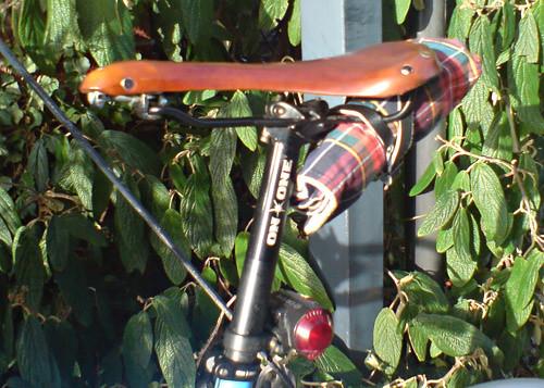 bike burrito