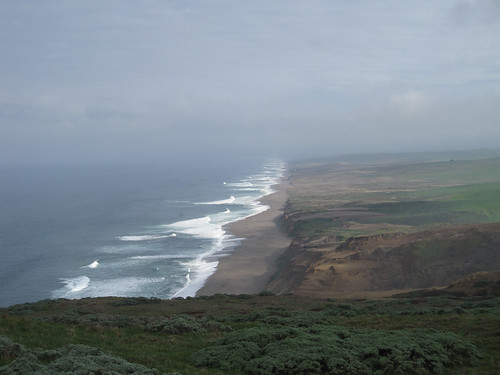 Pacific Coast View