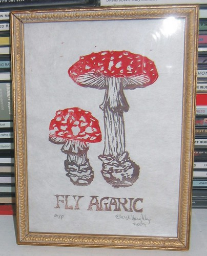 fly agaricframed proof