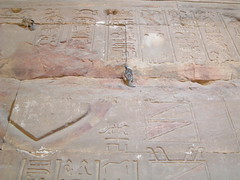 Egypt, Edfu Temple complex (tedesco57) Tags: temple egypt horus complex edfu