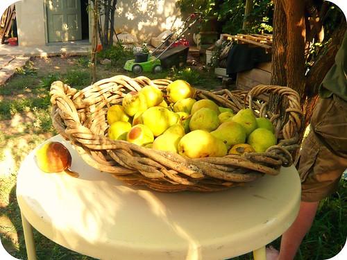 peras para pure