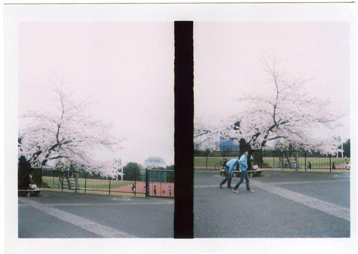 090223-hanami2
