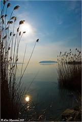 20090222_4920 Lago Trasimeno (Lino Sgaravizzi ) Tags: natura paesaggi umbria controluce trasimeno laghi abigfave citrit theunforgettablepictures 100commentgroup