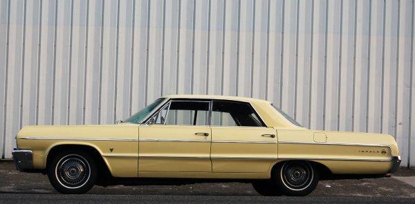DSC_0498_yellow_impala