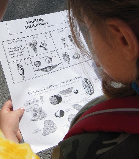 Fossil Dig Activity Sheet