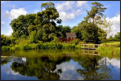 The Pond. (Pat Dalton...) Tags: bridge blue trees sky house reflection water birds clouds canon fence pond waterlily leicestershire sigma explore swans hedge rushes fie 1770mm 450d pdeee454