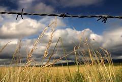_1-2-3_ (Nicolas Valentin) Tags: sky nature landscape scotland scenery glasgow 123 explore frontpage ecosse