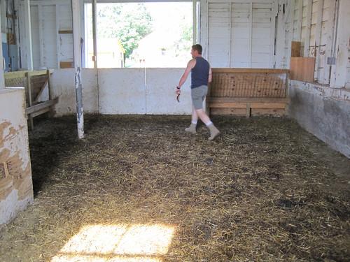 Mucky barn at American Masala