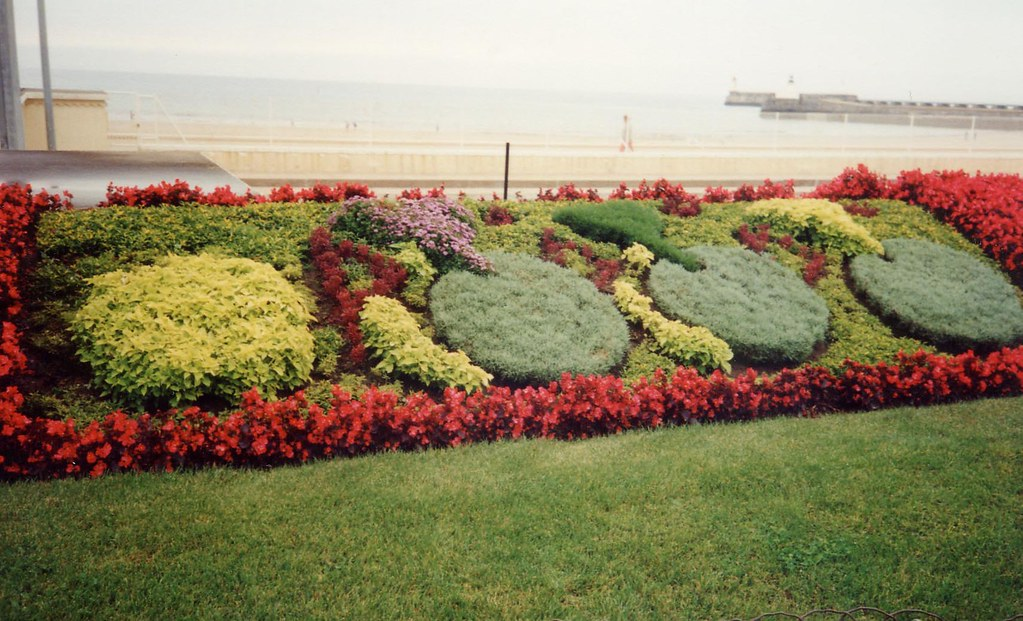 Look For Cyclists In The Flowers @ Les Sables