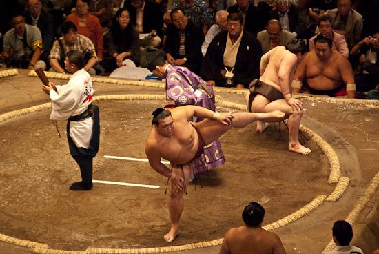 sumo_wrestling_6009