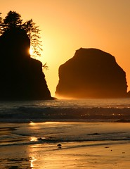 Sunset, Point of the Arches, Olympic National Park, Washington State (i8seattle) Tags: park boy sea seagulls beach water point coast arch pacific arches pacificocean pacificnorthwest olympic olympics washingtonstate olympicnationalpark shi pacificcoast washingtoncoast thirdbeach secondbeach seastack seastacks panorma olympicmountains olympiccoast shishibeach pointofarches pointofthearches coastpacific beacholympic washingtonmountains coastolympic andyporterphotography washingtonphotography imagesofwashingtonstate picturesofwashingtonstate picturesofthepacificnorthwest olympicnationalparkwashingtoncoastsunset seastacksunset imagesofwashington photosbyandyporter archesshi