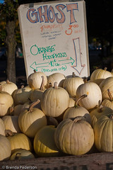 Ghost Pumpkins (Culinary Fool) Tags: fall fruits vegetables pumpkin farmersmarket squash produce universitydistrict culinaryfool udist 2470mm28 udfm