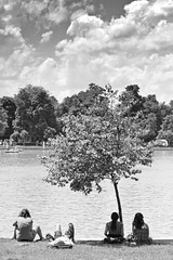Shade. (Ian McWilliams.) Tags: madrid two sun tree cool pond spain shade cooler buenretiropark canon550d