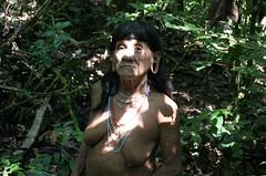Hunting with the Huaorani (sensaos) Tags: portrait pierced woman face ecuador mujer community indian traditional hunting selva ears tribal piercing jungle indians tribe indios stretched portret hunt indio indigenous famke huaorani indigena shiripuno waorani sensaos bameno