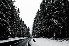 Black Forest Road (J e n s) Tags: bw snow germany pentax january blackforest 2009 istds zoomlens 18250 da18250 jrpq