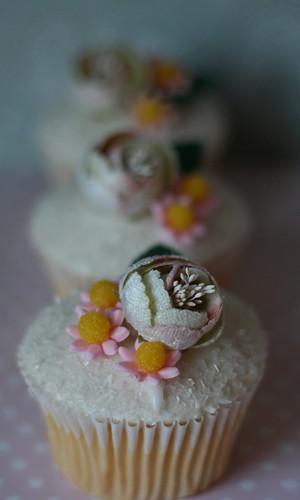 Cupcake Designs ........