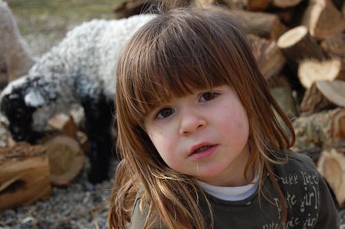 http://farm4.static.flickr.com/3532/3250513954_bf6d130bb4.jpg
