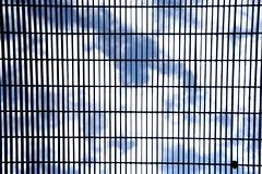 find your freedom (raffaellamidiri) Tags: blue sky scale clouds freedom university nuvole cielo azzurro exam messina libert emergencyexit griglia grata